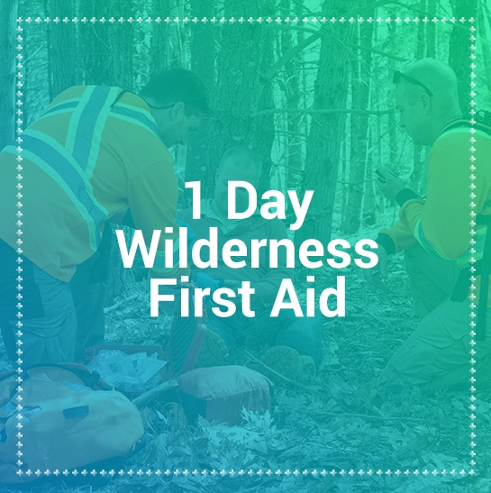 1 day wilderness first aid courses